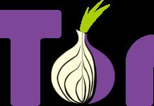 tor bug bounty program