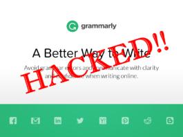 grammarly spell checker