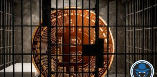 Why Countries Should not Ban Bitcoin?- Official Hacker
